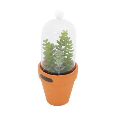 Vaso-Plastico-Vidro-Cotyledun-Sucullent-Verde-Laranja-Com-Tampa-889X889X2223cm