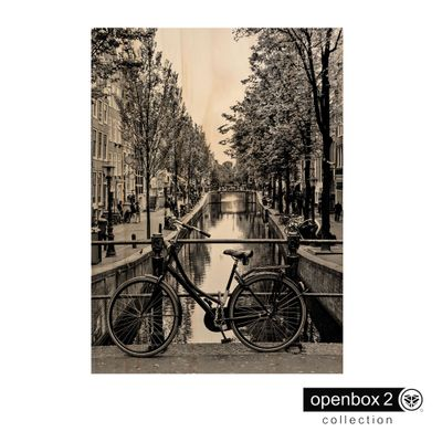 Quadro-Wood-Print-50X33-Bicicleta-Retro
