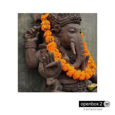 Quadro-Wood-Print-60X60-Ganesha