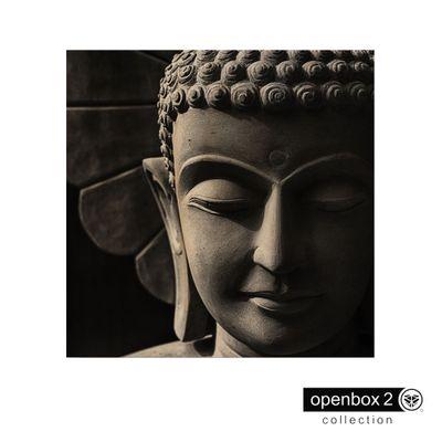 Quadro-Wood-Print-60X60-Fundo-Preto-Buda