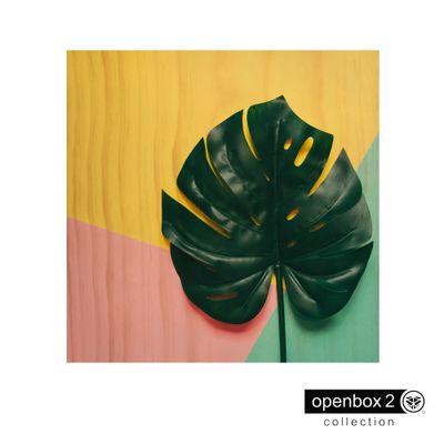 Quadro-Wood-Print-60X60-Fundo-Colorido-Folha-Verde